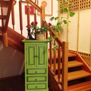 Home-Asiaschrank-grün-Möbel-Upcycling-Wien