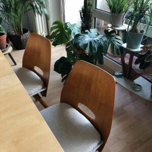 Restaurierte Sessel-Holz und Taperzierung
